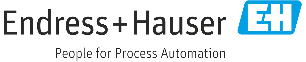 Endress Hauser is the partner of Plasma Machinery Design LLC